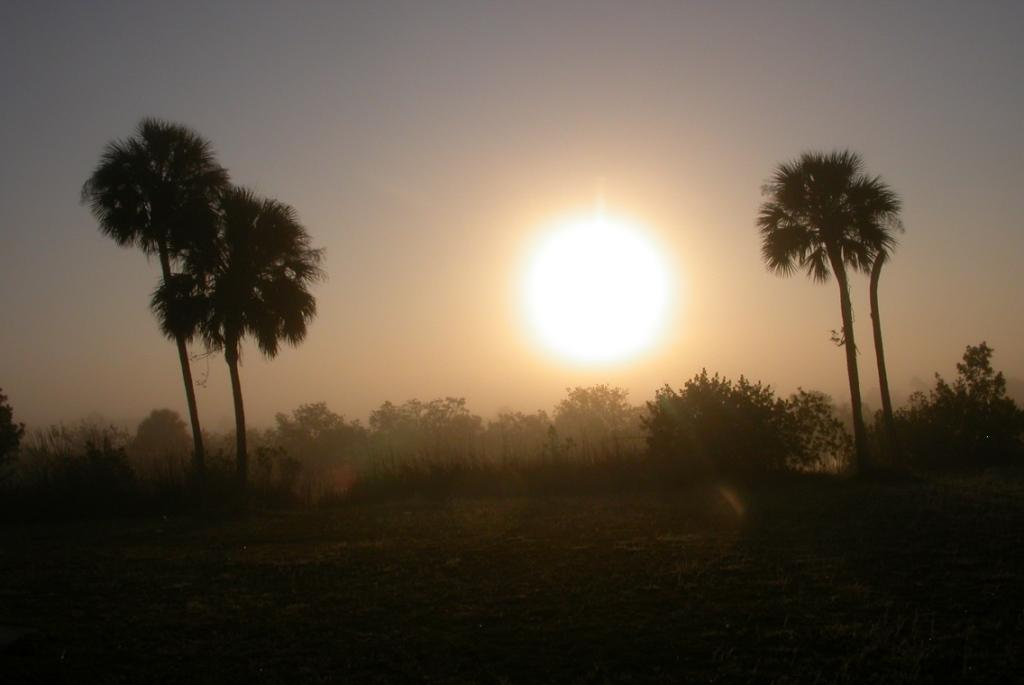 Big Cypress Sunset1